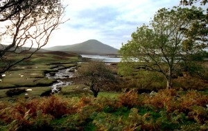 Mayo Irlanda - Contea