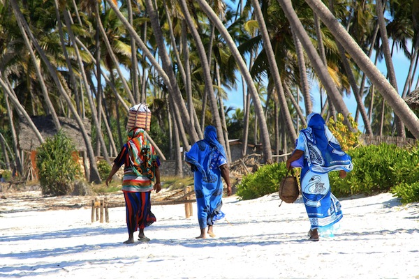 Safari nel Selous, Tanzania e mare a Zanzibar
