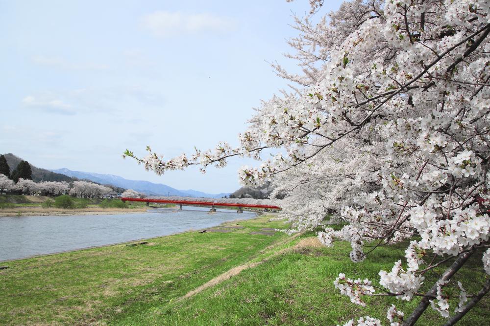 Akita – Giappone