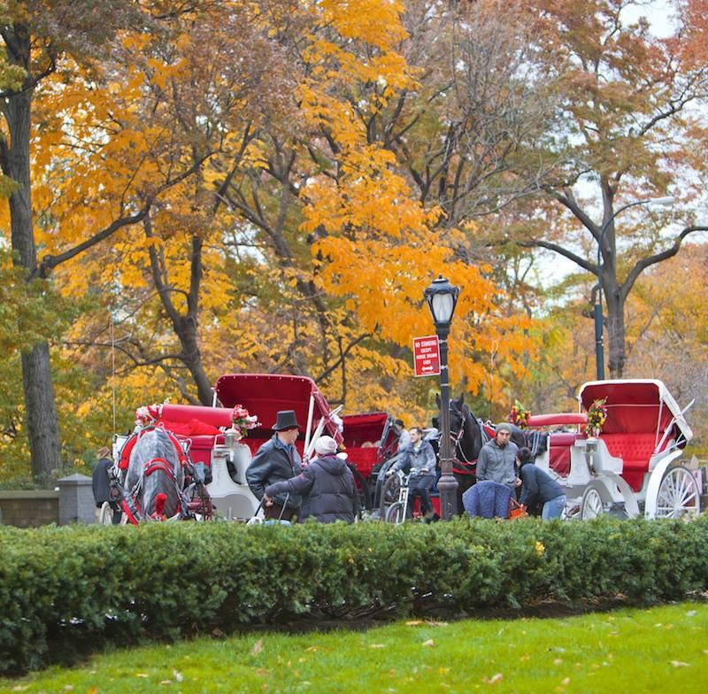 A spasso per Central Park New York City