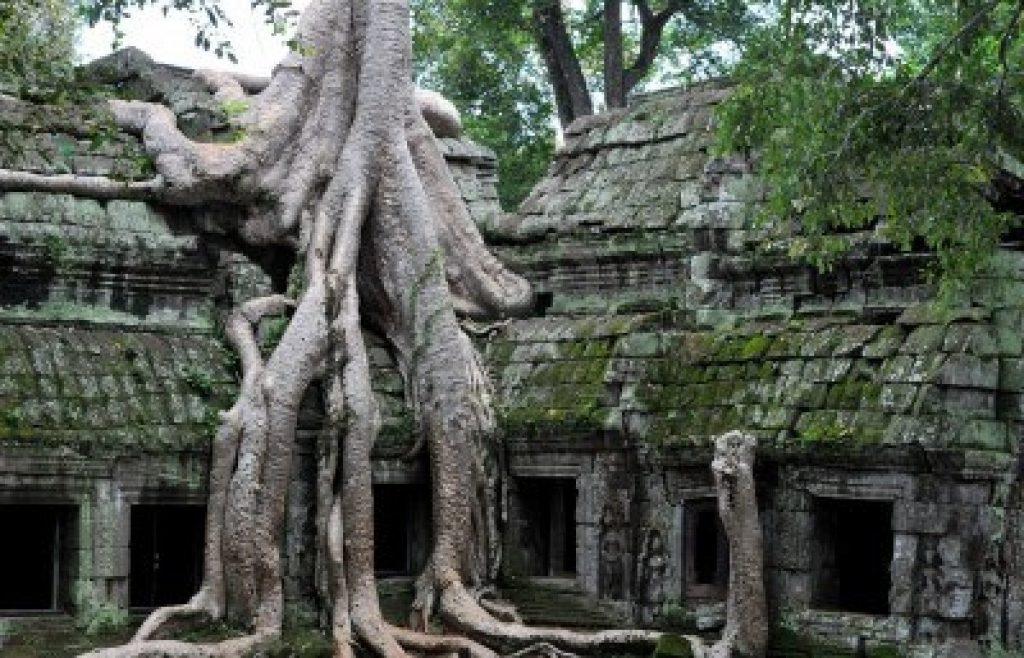 Bayon Angkor Thom Cambogia il nascosto giungla tempio ta prohm vicino a angkor wat a siem reap cambogia e uno dei luoghi piu af