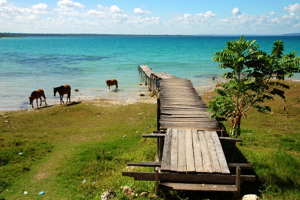 Blue Lake with Horses in Guatemala