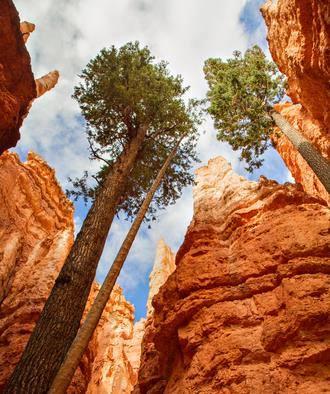Bryce Canyon0 National Park Utah