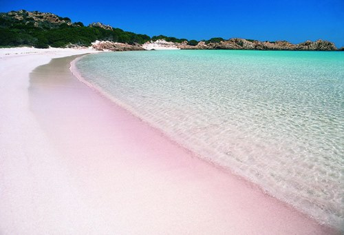 Budelli beach Sardegna