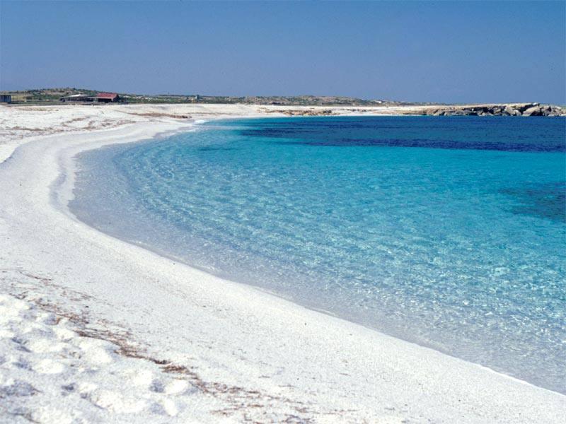 Cabras la spiaggia di Is Arutas Sardegna