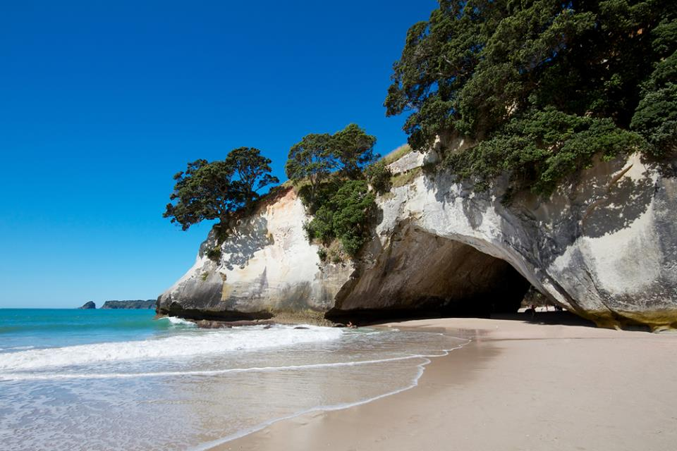Cathedral Cove New Zealand 1
