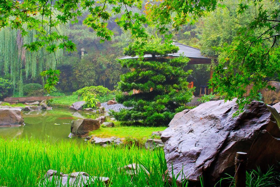 Chongqing city China 1