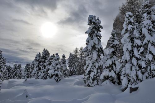 Dolomites South Tyrol Alps Italy
