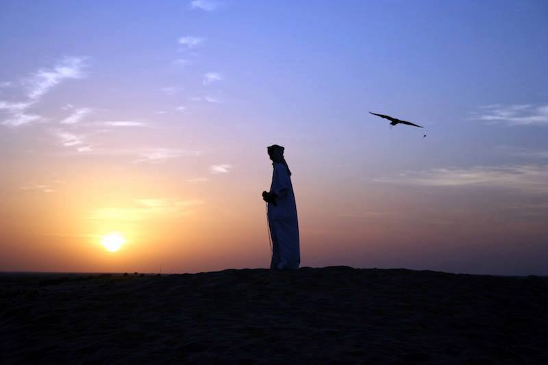 Emirati Arabi Desert