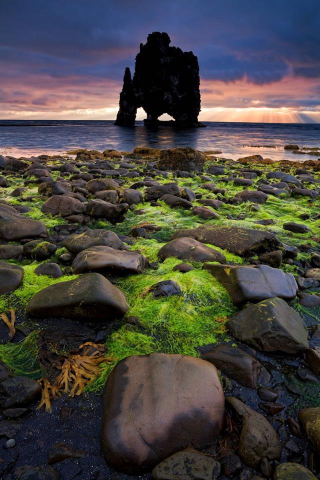 Faraglione di Hvitserkur penisola di Vatnsnes Islanda