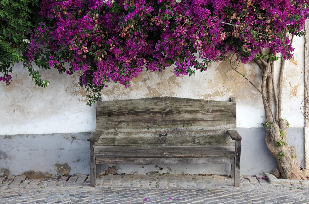 Faro Algarve Portuga