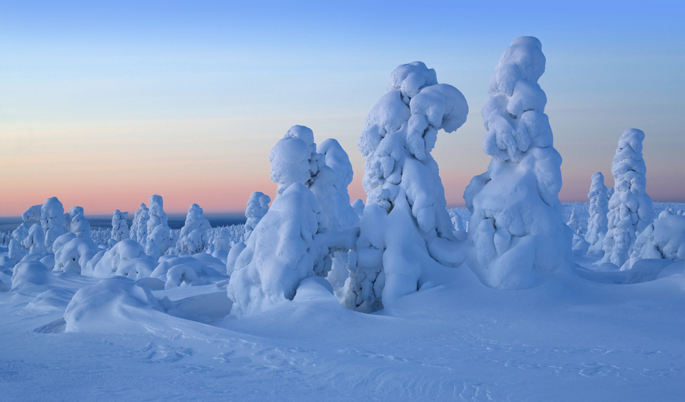 Frosty morning on border with Siberia