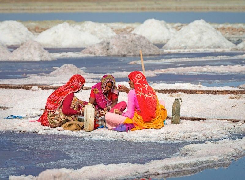 Lunch Sambhar Lake Rajasthan