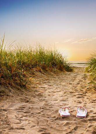 Maine beach 5