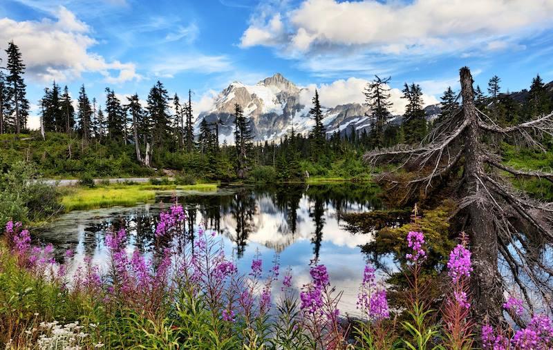 Mt Shuksan with Highwood Lake Washington State