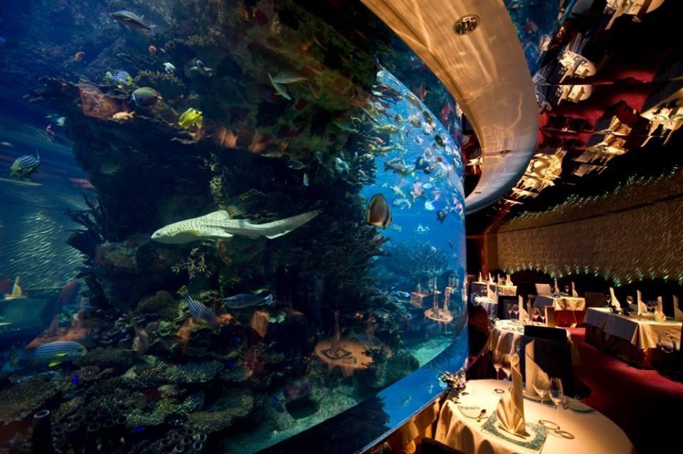 Pranzo presso il ristorante Le vele di Dubai potete arrivare in sottomarino