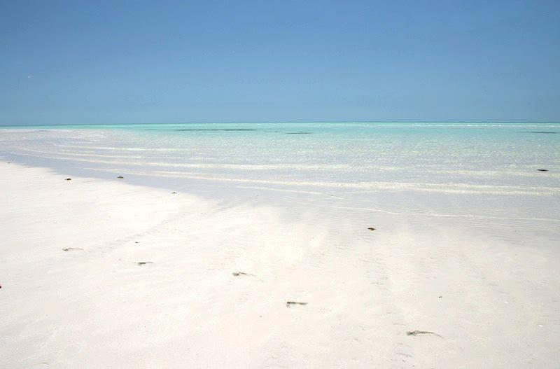 Qatar Golfo Persico8