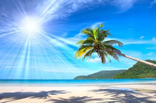 Rarotonga Islands