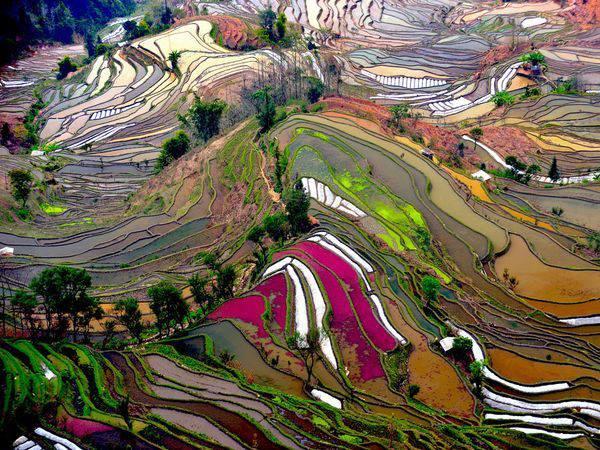 Rice Terraces of Ping 'An 0Longsheng China