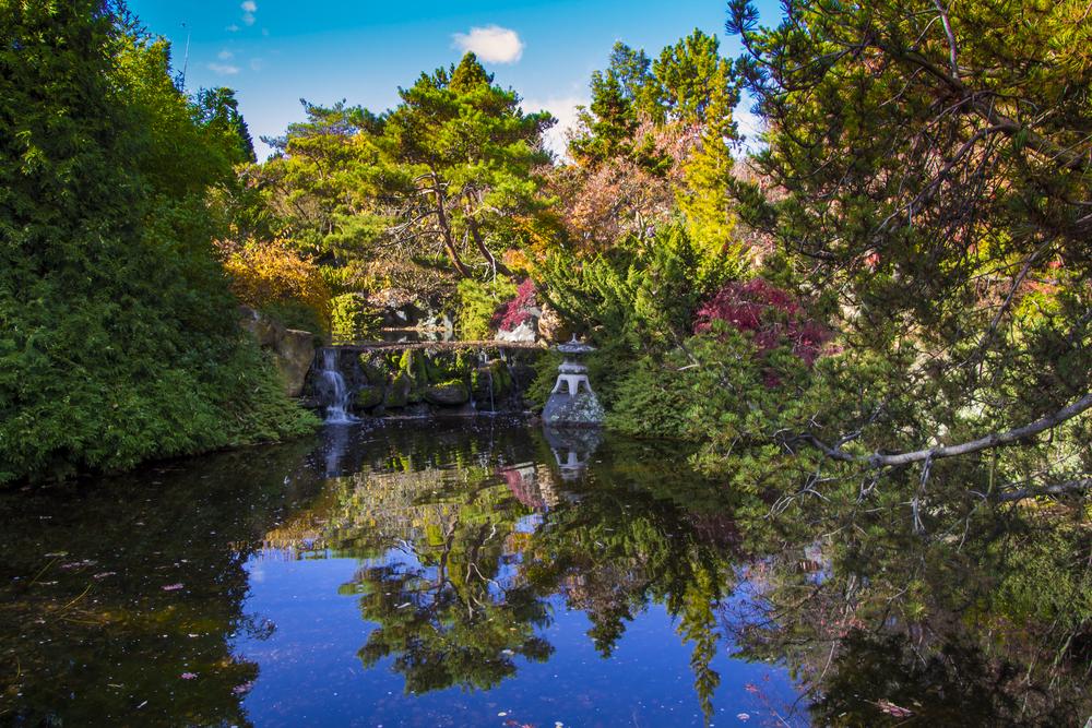 botanical gardens of Tasmania situated in Hobart