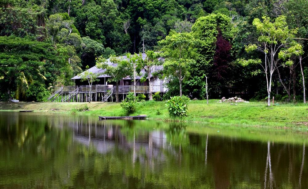 longhouse in sarawk borneo