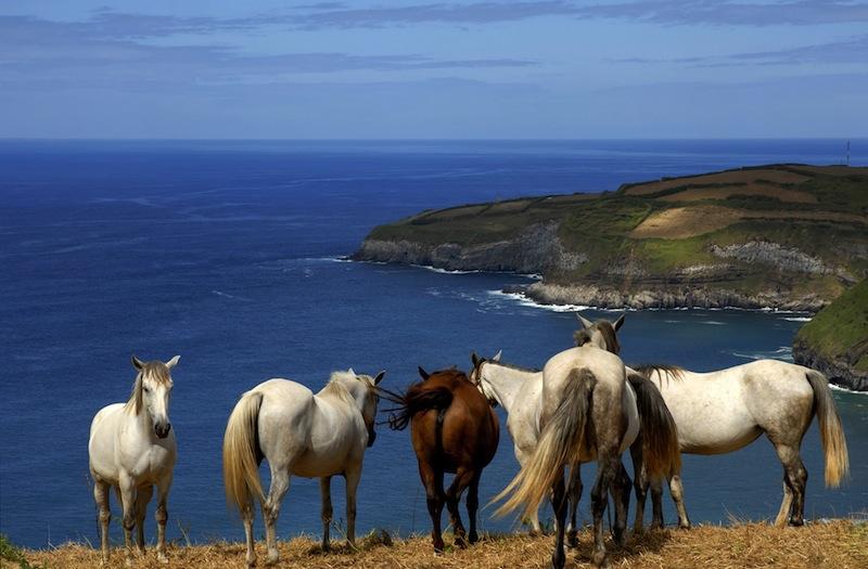 sao miguel island Portugal