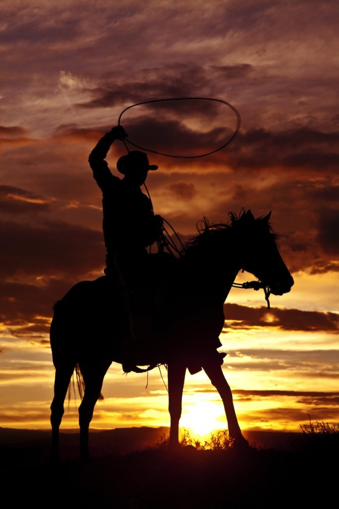 A cowboy is sitting on his horse in the sunset and swinging a rope