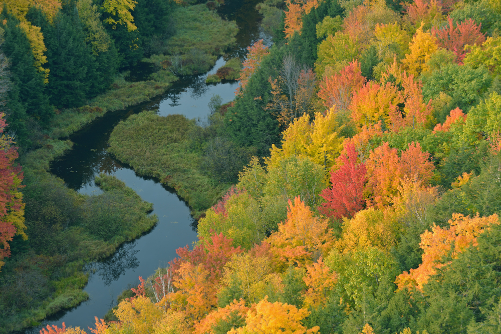 Aerial perspective of autumn forest and creek Lake of the Clouds Porcupine Mountains Wilderness State Park Michigans Upper Peninsula USA