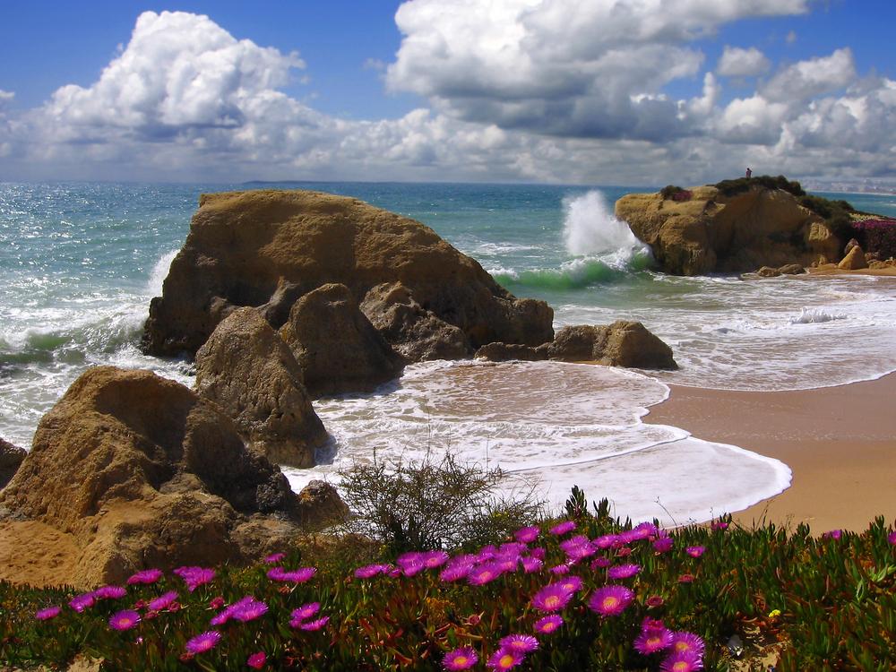 Algarve beach in the spring Portugal