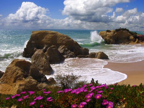 Algarve beach0 in the spring Portugal