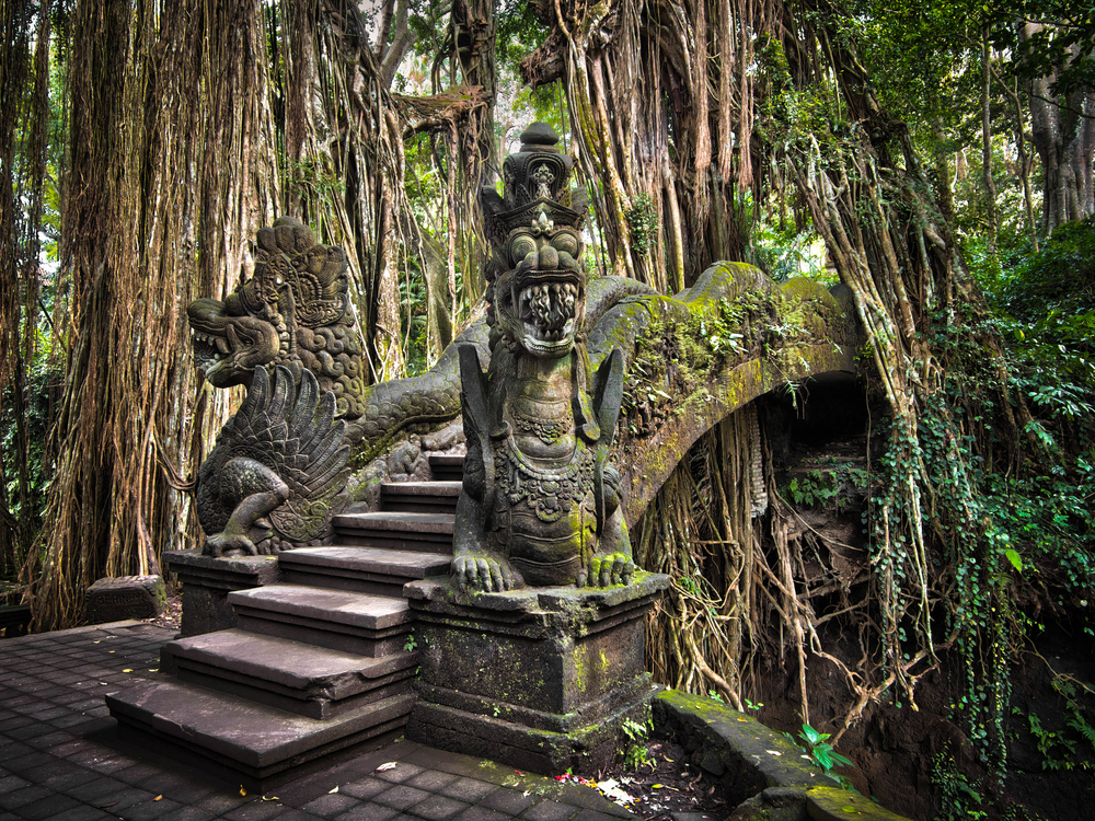 An impressive pathwaybridge cuts through the roots of a banyan tree and crosses a gorge in Ubuds Monkey Forest Sanctuary in Bali Indonesia
