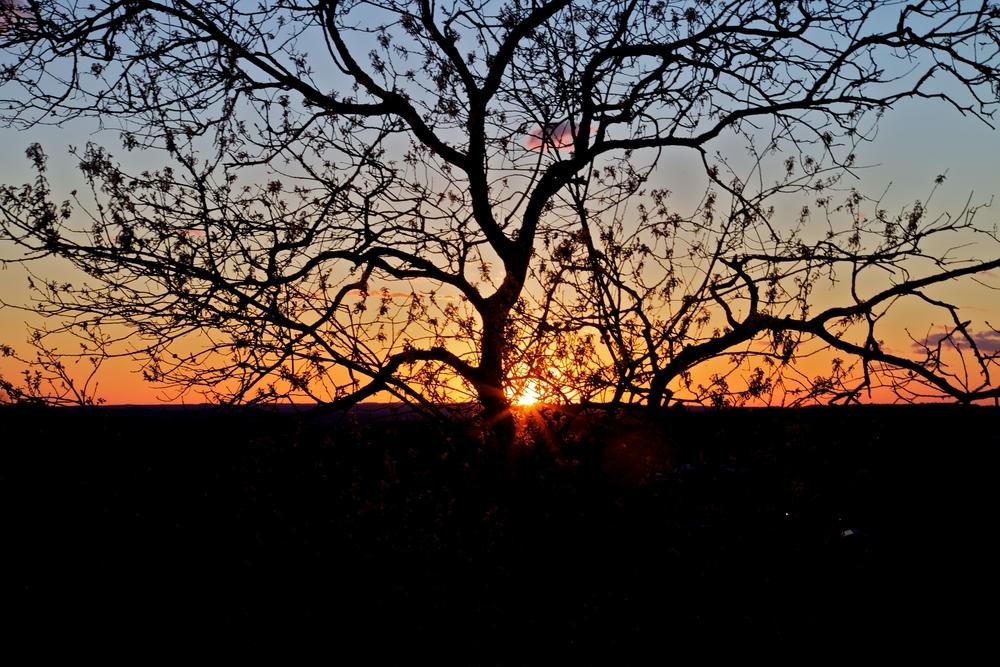 Austin Sunset texas5
