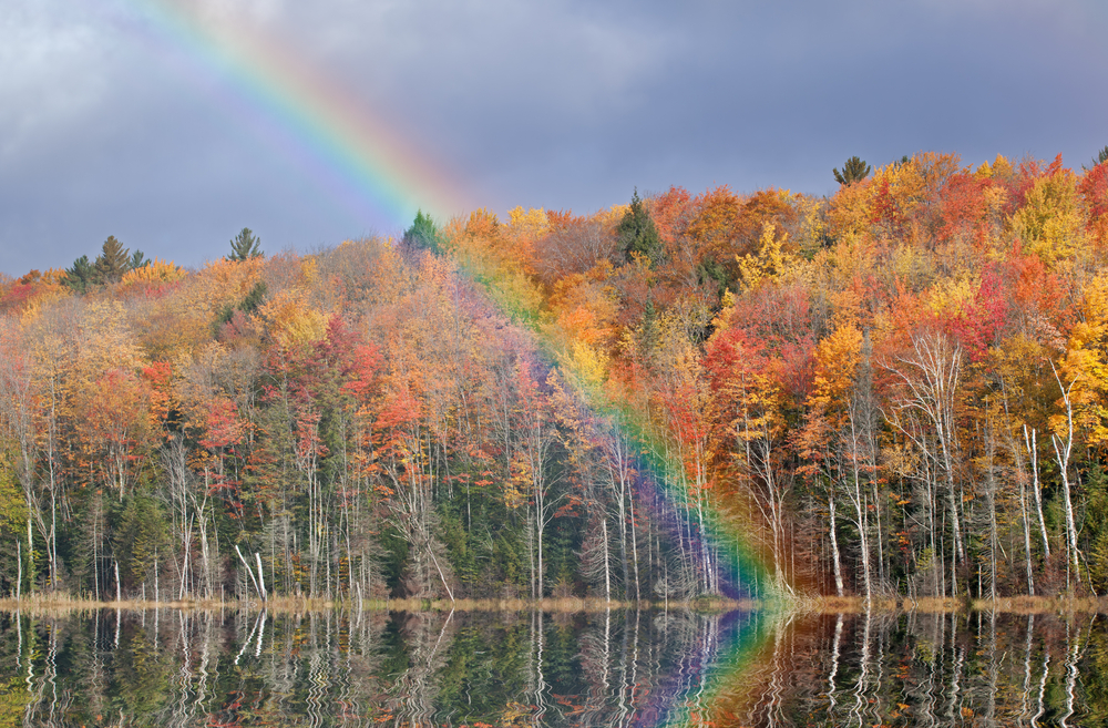 Autumn landscape of Scout Lake with rainbow Michigans Upper Peninsula USA