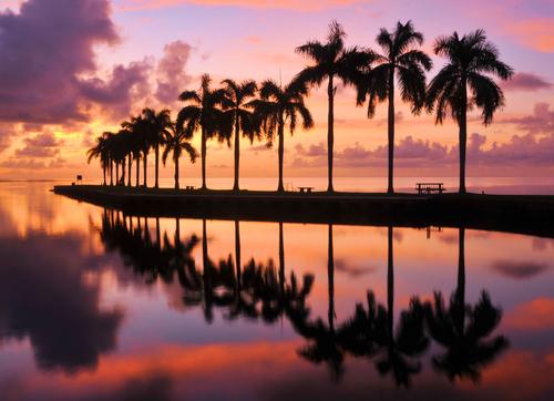 Bay near Miami Florida  Beauty and the Beach