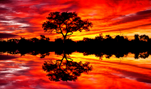Beautiful African sunset reflected in water in the Kruger National Park South Africa