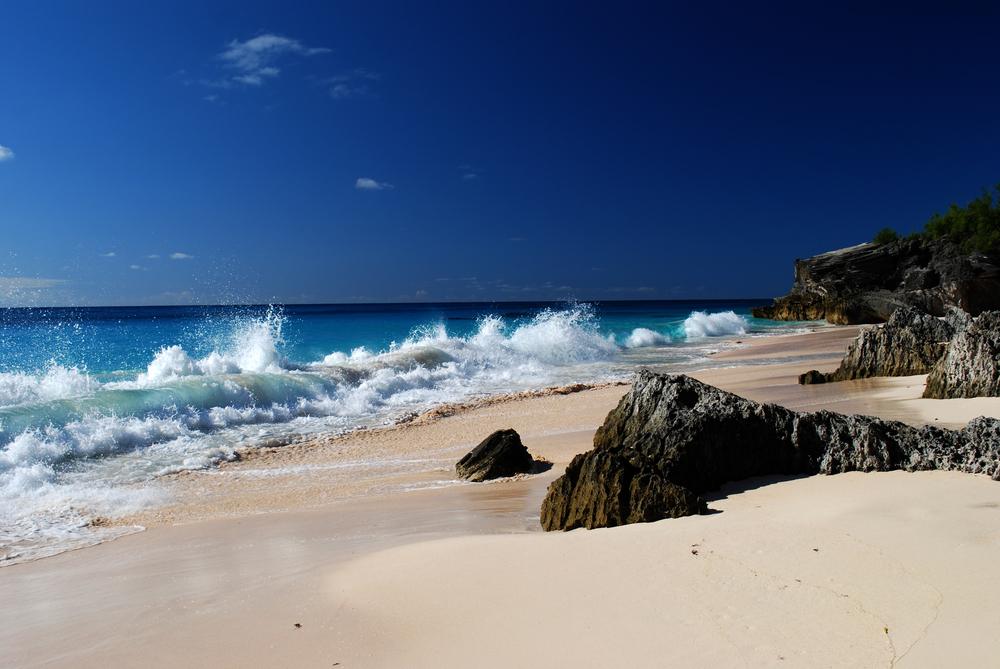 Bermuda 6