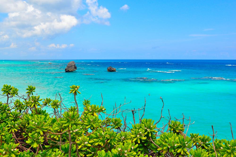 Bermuda Exotic Beach