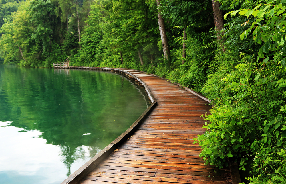 Bled Lake Slovenia Europe
