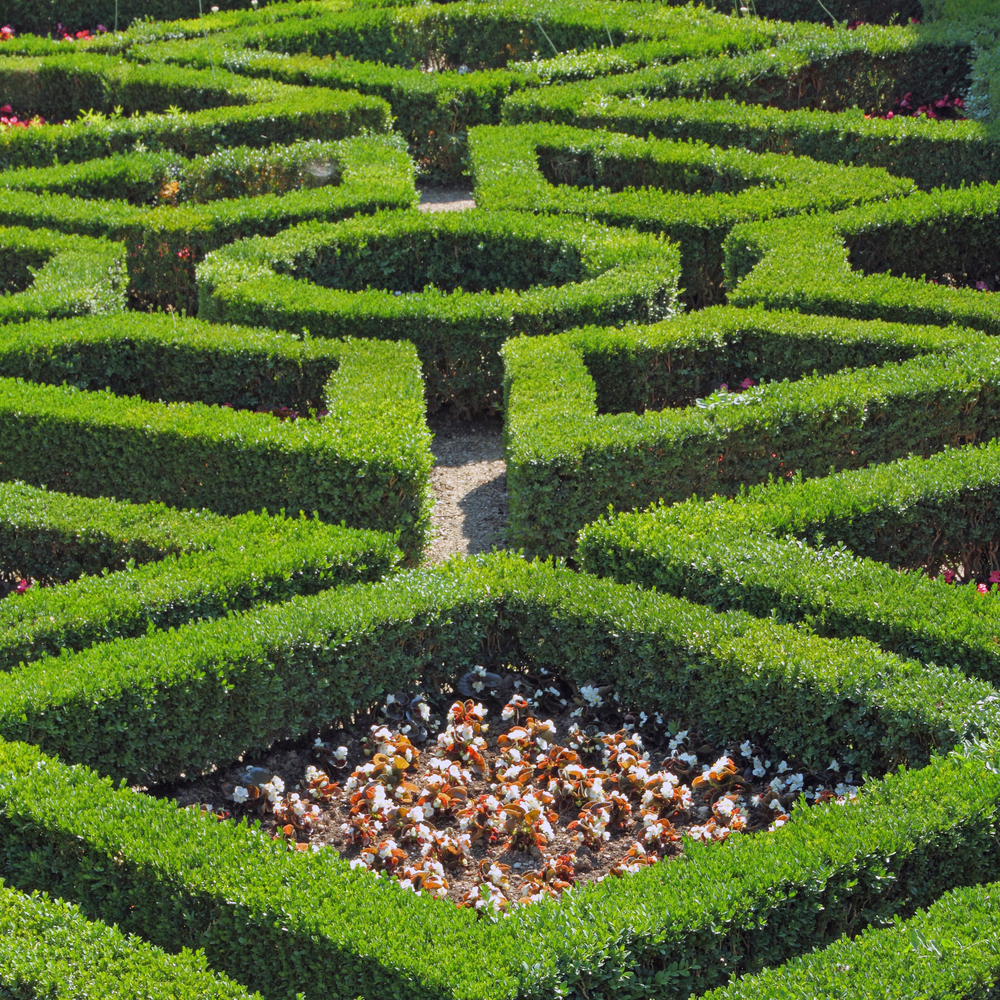 Boboli Gardens in Florence UNESCO World Heritage Site Italy Europe