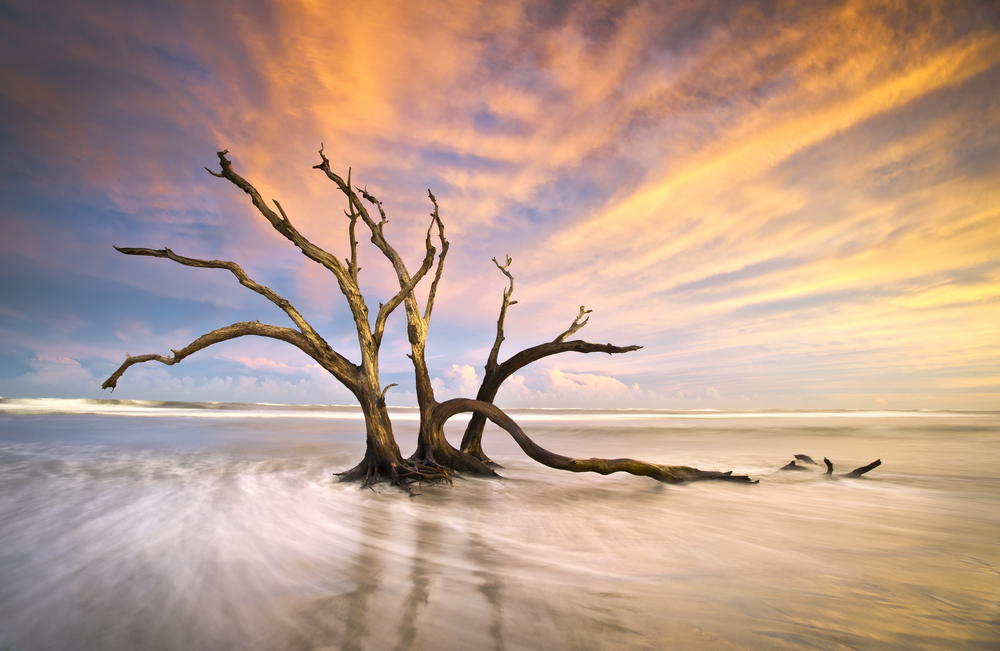 Botany Bay Edisto Island SC Boneyard Beach sunset landscape Charleston South Carolina east coast 5