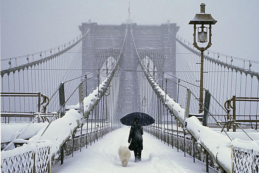 Brooklyn Bridge in the New York City