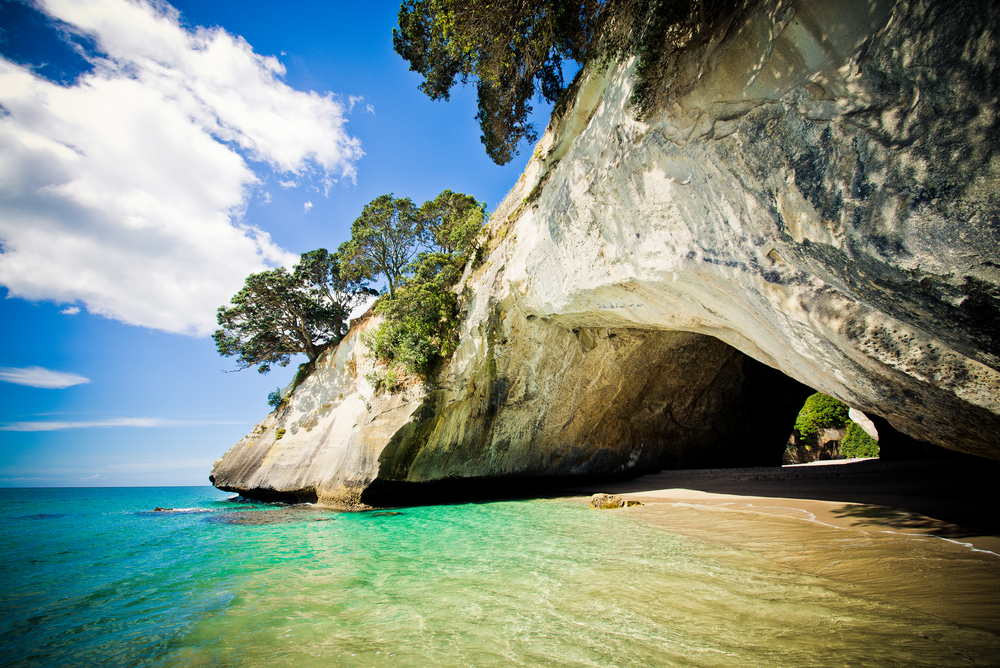 Cathedral Cove marine reserve on the Coromandel Peninsula in New Zealand6