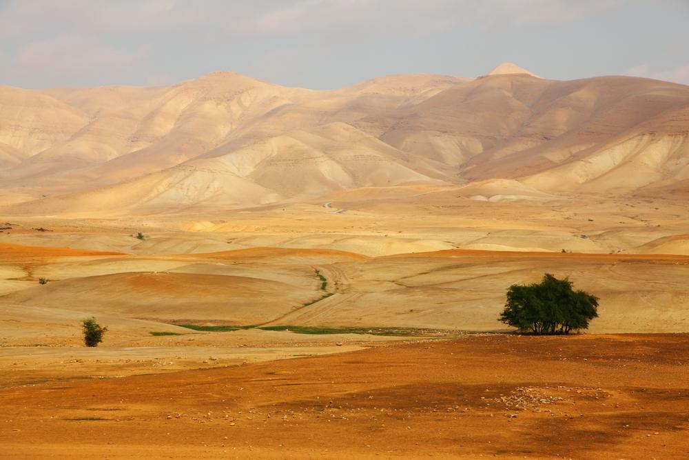 Desert Sinai in the early israele