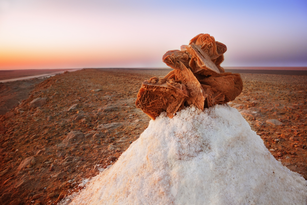 Desert rose in Chott el Djerid salt lake in Tunisia 9