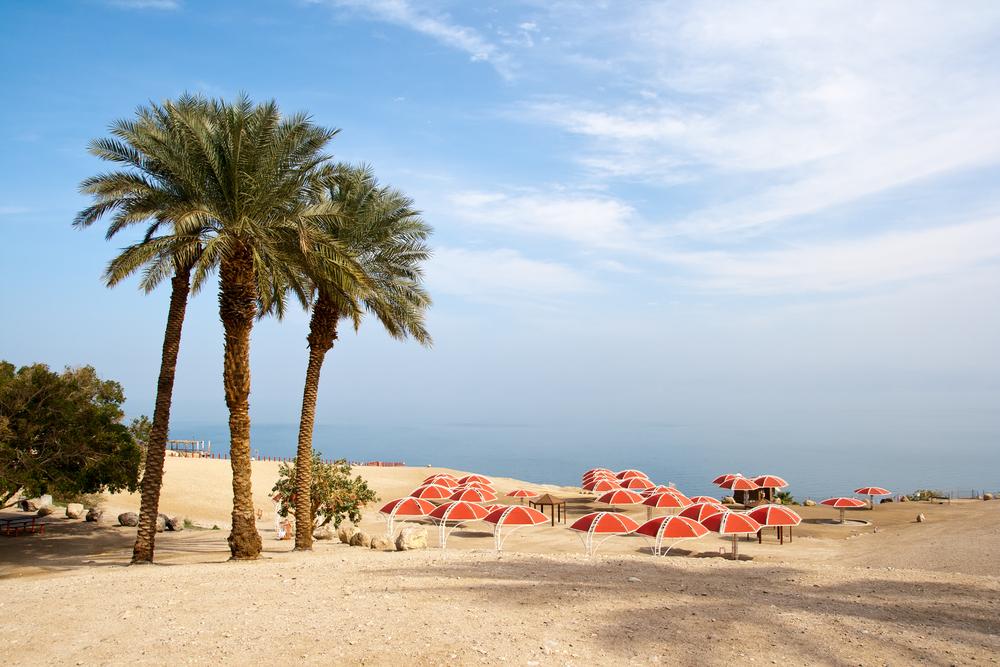 Ein Gedi oase at the Dead Sea