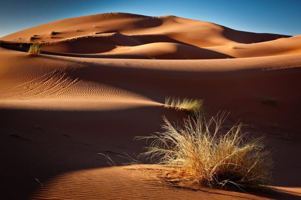 Erg chebbi sand dunes Morocco North Africa