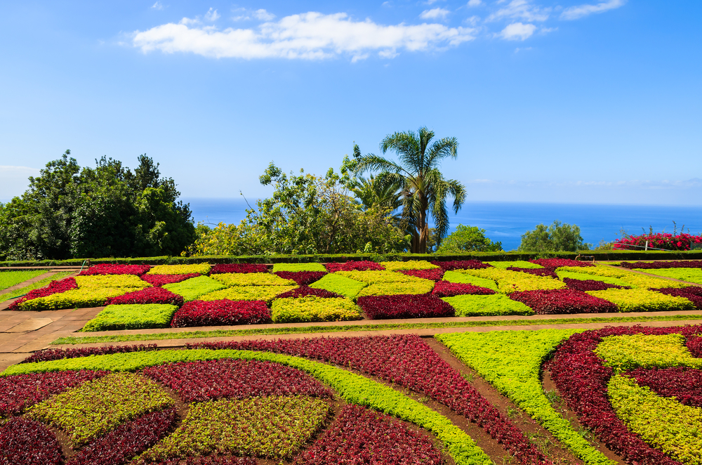 Famous Tropical Botanical Gardens in Funchal town Madeira island Portugal