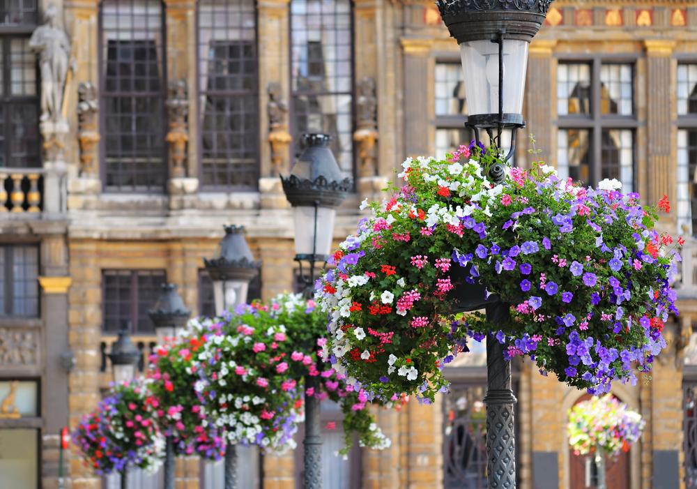Grand Place in Brussels Belgium