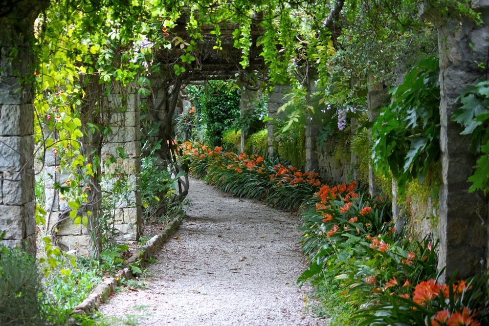 Green bower in Villa Hanbury Botanic Gardens near Ventimiglia Italian Riviera liguria5
