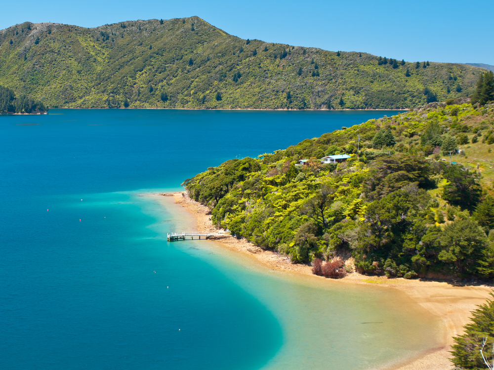 Green forest and blue water in the Marlborough sounds New Zealand